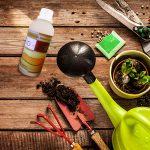 5 Hobi Ini Bisa Bikin Kamu Sehat