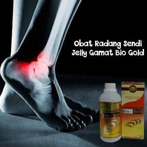 Obat Radang Sendi Jelly Gamat Bio Gold