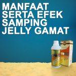 Manfaat Jelly Gamat Dan Efek Sampingnya