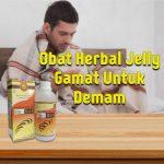 Obat Herbal Jelly Gamat Untuk Demam