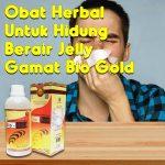 Obat Herbal Hidung Berair Jelly Gamat Bio Gold