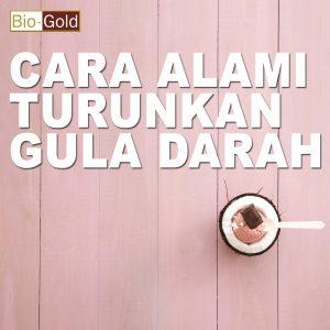 Gula Darah Turun Dengan Jelly Gamat Bio Gold