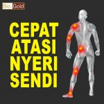 Obat Herbal Nyeri Sendi Jelly Gamat Bio Gold