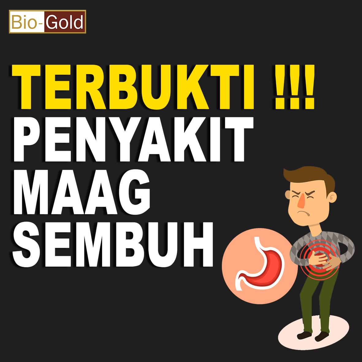 Maag Sembuh Dengan Jelly Gamat Bio Gold