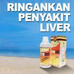 Cara Ampuh Untuk Ringankan Penyakit Liver Jelly Gamat