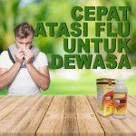 Cara Cepat Atasi Flu Untuk Dewasa Jelly Gamat