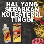 Hal hal yang Menyebabkan Kolesterol Naik Jelly Gamat