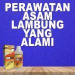 Perawatan Asam Lambung Jelly Gamat