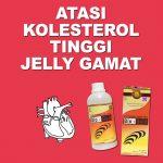 Solusi Cerdas Atasi Kolesterol Tinggi Jelly Gamat Bio Gold