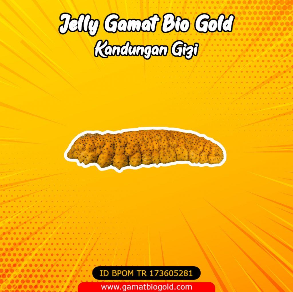 Kandungan Gizi Jelly Gamat Bio Gold